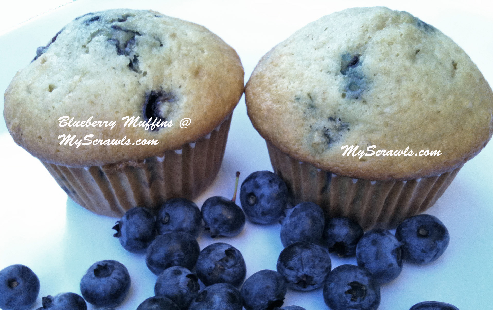 Blueberry Muffins Recipe Blueberry muffins – My Scrawls