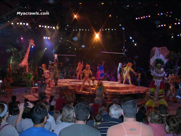 Festival of Lion King, Musical show