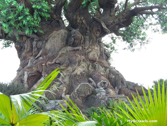 Tree of Life, Disney Animal Kingdom